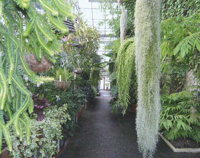 Botanischer Garten Saarbrücken